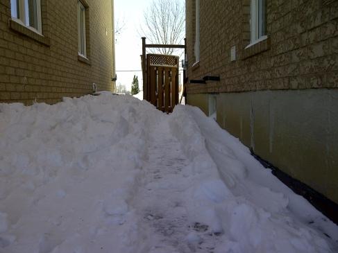 Path to Backyard