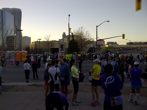 Runners gather before start