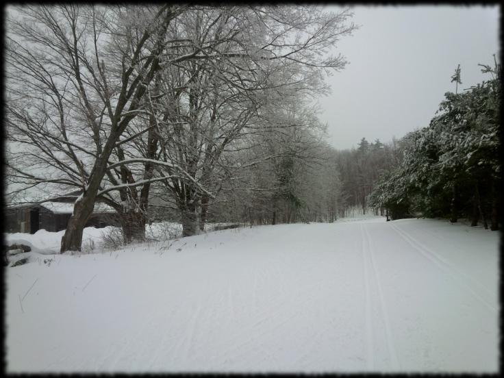 Hardwood Trails 941